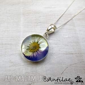 Papatya - Polny kwiatek, żywica, srebro, kwiat, naszyjnik