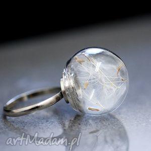 dmuchawiec posrebrzany pierścionek, nasiona, dmuchawca, natura, mniszek, kula, szkło