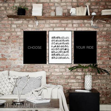 grafika grafiki b2 choose your ride, grafiki, zestaw, obraz, rower, plakat, ścianę