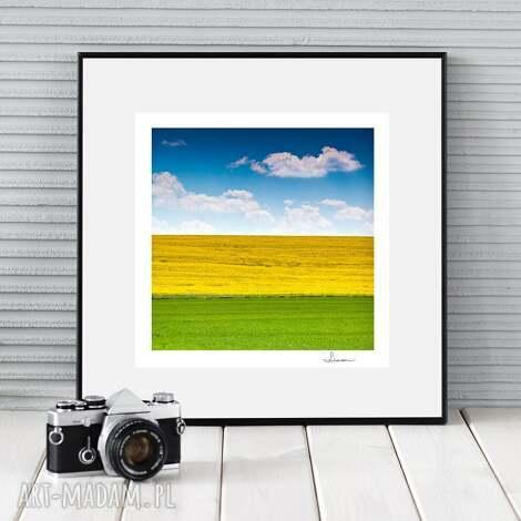 autorska fotografia, trzy kolory, prezent, zdjęcie, dekoracja, ozdoba