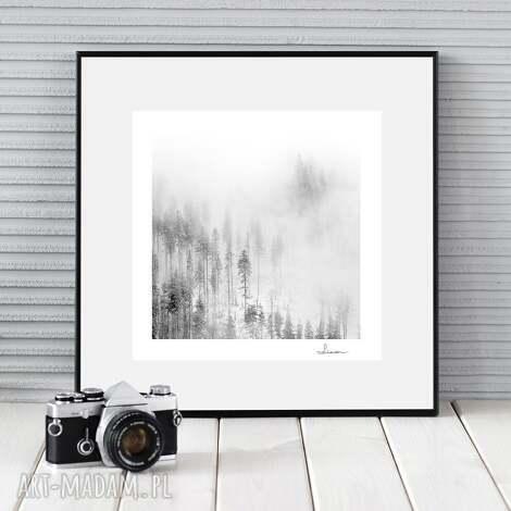 autorska fotografia, zimowy pejzaż ii, zdjęcie, prezent, dekoracja