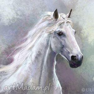 liliarts obraz biały koń - płótno, obraz, koń, konik, malowany, konie dom