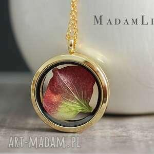 dwukolorowa hortensja pozłacany medalion - naszyjnik, biżuteria, natura, berlin