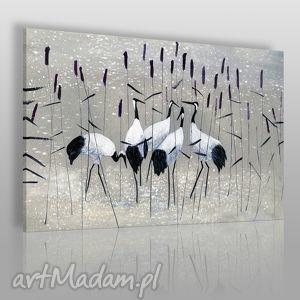 obraz na płótnie - żurawie nad wodą 120x80 cm 38201 , żurawie, ptaki, staw, woda