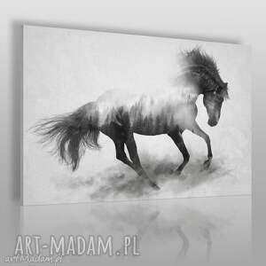 obraz na płótnie - koń galop 120x80 cm 45301 , koń, zwierzę, galop, dziki, las