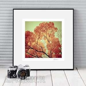 autorska fotografia, płonąca jesień, zdjęcie, prezent, dekoracja, jesień