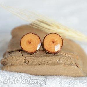 kolczyki z drewna - naturalne, drewno, drewniane, drzewa, las, leśne, wkrętki