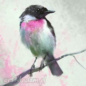 obrazy obraz - dotyk wiosny ptak, pastelowy płótno, obraz, plótno, ptaszek