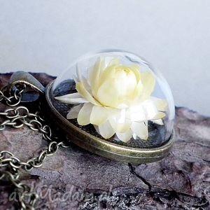 kwiatowe terrarium, szklany, medalion, prawdziwy, kwiat, susz, natura