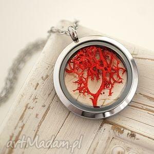 jesienne drzewo medalion 4 pory roku - mech, pora, rok, medalion, czerwień, natura