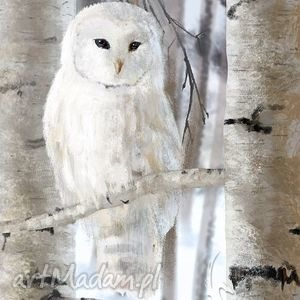 obraz biała sowa - skandynawski płótno, obraz, sowa, skandynawski, natura, plótno